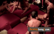 Swingers are fucking several partners into a wild softcore group sex